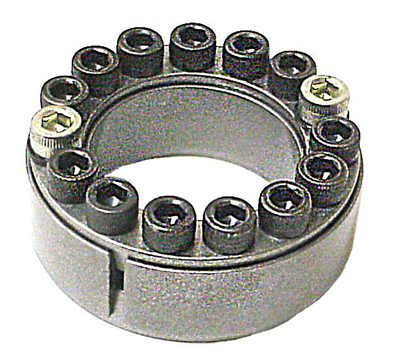 Ringfedder Assembly